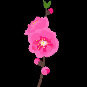 桃の花のイラスト 無料イラスト素材集lemon