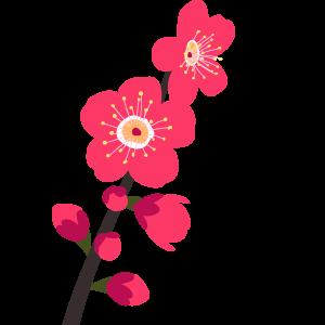 梅の花のイラスト