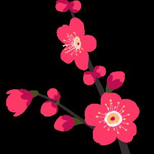 梅の花のイラスト 無料イラスト素材集lemon