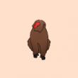 動物のイラスト 猿