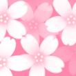 桜の花のヘッダー