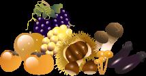 秋の味覚のイラスト