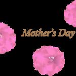 母の日のカーネーション