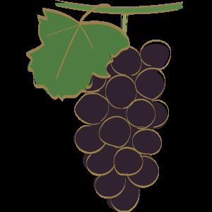 葡萄のイラスト