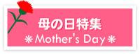 母の日 ネットショップ向けバナー