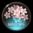 桜のアイコン
